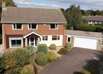 Thumbnail 4 bed detached house to rent in Broadway, Woodbury, Exeter