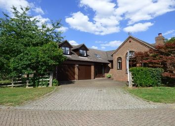 Thumbnail 4 bed detached bungalow to rent in Lucy Lane, Milton Keynes