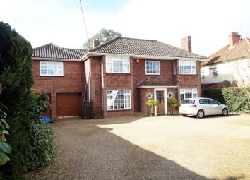 Thumbnail 5 bedroom detached house for sale in Thetford Road, Watton, Thetford