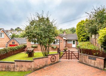 3 bed detached bungalow for sale in Henley Road, Bream, Lydney GL15