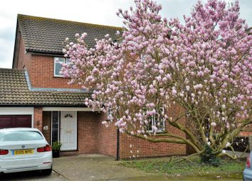 Thumbnail 4 bed link-detached house for sale in Cherrydown, Grays