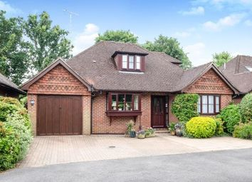 Thumbnail 3 bedroom bungalow for sale in Cranleigh, Surrey