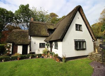 Thumbnail 3 bed cottage for sale in The Hollow, Littleover, Derbyshire