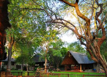 Thumbnail Farm for sale in Hoedspruit, 1380, South Africa