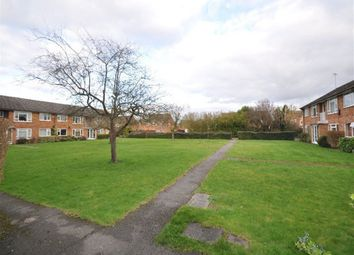 Thumbnail Property to rent in Prince Andrew Close, Maidenhead