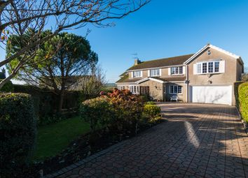 Thumbnail 5 bed property for sale in Brynview Close, Reynoldston, Swansea