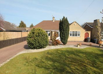 Thumbnail 4 bed detached bungalow for sale in Burbage Road, Burbage, Hinckley
