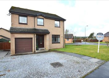 Thumbnail 4 bed detached house for sale in Kane Place, Stonehouse, Larkhall