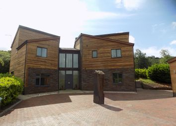 Thumbnail 4 bed detached house for sale in Forest Lodge Lane, Cwmavon, Port Talbot, Neath Port Talbot.
