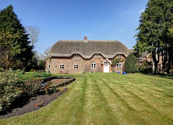 Thumbnail 3 bed cottage to rent in Greengate Road, Wedhampton, Devizes