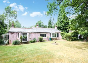 Thumbnail 3 bed bungalow to rent in Newdigate Road, Beare Green, Dorking, Surrey