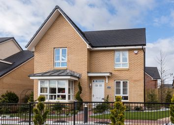 "Thumbnail 4 bed detached house for sale in ""Culzean"" at Foxglove Grove, Cambuslang, Glasgow"