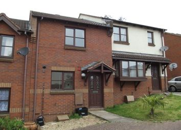 Thumbnail 2 bed property to rent in Abelia Close, Paignton