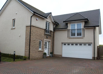 Thumbnail 4 bed detached house to rent in Blairythan Place, Fovern AB41,