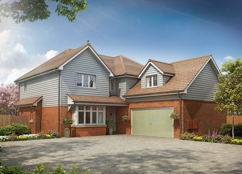 Thumbnail 4 bedroom detached house for sale in Bluebell Meadow, Wisborough Green