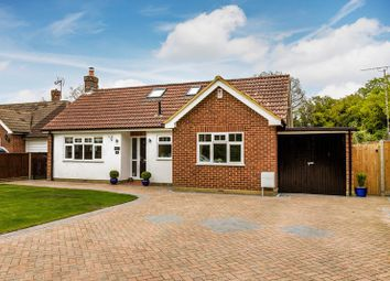 Thumbnail 4 bed detached bungalow for sale in Fir Tree Close, Crawley