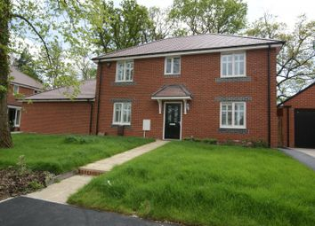 Thumbnail 4 bed detached house to rent in Oaklands Avenue, Rowland's Castle
