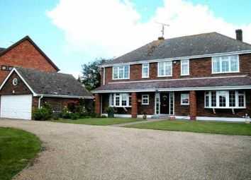 Thumbnail 4 bed detached house to rent in Back Lane, Wickham Bishops, Witham