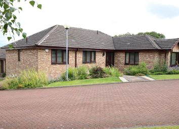 Thumbnail 4 bed property for sale in Naismith Court, Stonehouse, Larkhall