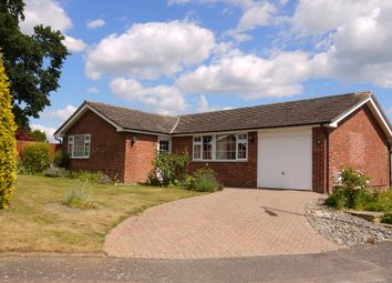 Thumbnail 3 bed detached bungalow for sale in Acton, Sudbury, Suffolk