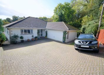 Thumbnail 5 bed detached bungalow for sale in Bolt House Close, Tavistock