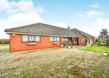 Thumbnail 4 bed detached bungalow for sale in Holly Farm Road, Reedham, Norwich