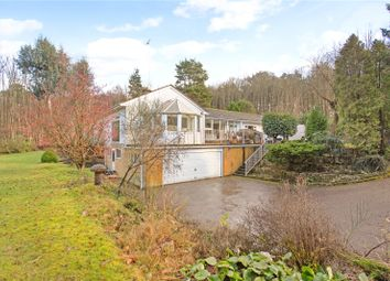 Thumbnail 4 bed bungalow for sale in Stodham Lane, Liss, Hampshire