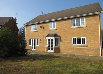 Thumbnail 7 bed detached house for sale in Arbroath Gardens, Orton Northgate, Peterborough