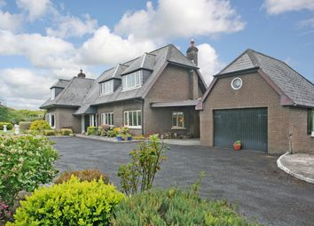 Thumbnail 4 bed detached house for sale in Ely House, Ardnacrusha, Clare
