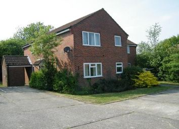 Thumbnail Studio to rent in Salisbury Close, Alton