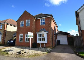 Thumbnail 4 bedroom detached house to rent in Norfolk Road, Ely
