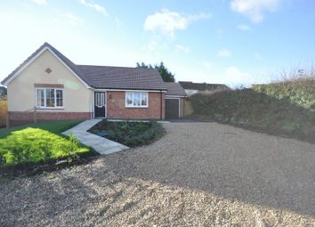 Thumbnail 3 bed bungalow for sale in Orchard Close, Coleford, Radstock