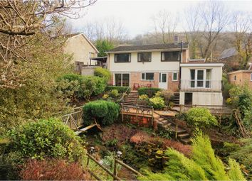 Thumbnail 4 bed detached house for sale in Brockweir, Brockweir