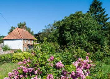 Thumbnail 4 bed detached house for sale in Main Road, West Keal, Spilsby