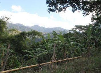 Thumbnail Land for sale in Kingston St Andrew, Saint Andrew, Jamaica