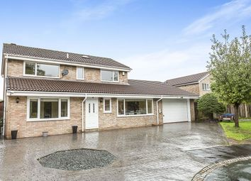 Thumbnail 4 bed detached house for sale in Dukes Meadow, Preston