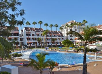 Thumbnail Studio for sale in Playa De Las Americas, Tenerife, Spain