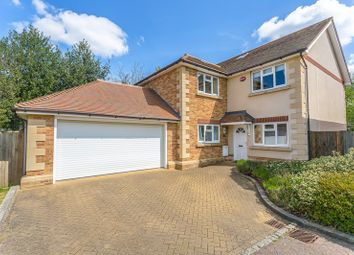 Thumbnail 4 bed property for sale in Elysian Place, South Croydon