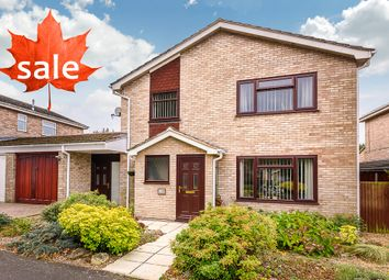 Thumbnail 3 bed detached house for sale in Harleston, Norfolk