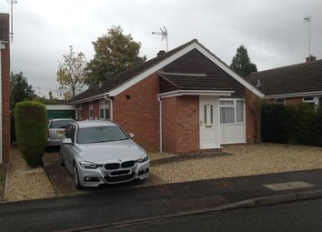 Thumbnail 4 bed detached bungalow to rent in Hilltop Road, Cheltenham