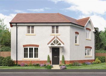 "Thumbnail 3 bed detached house for sale in ""Pomeroy"" at Oteley Road, Shrewsbury"