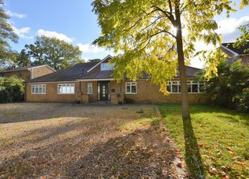 Thumbnail 6 bed detached house to rent in Eastwick Road, Walton On Thames