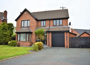 Thumbnail 4 bed detached house for sale in Thornhill Avenue, Lisburn