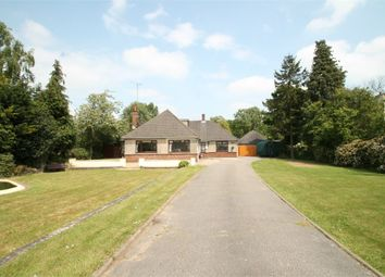 Thumbnail 5 bed property for sale in Felixstowe Road, Nacton, Ipswich, Suffolk