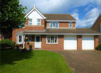 Thumbnail 4 bedroom detached house for sale in Oakfield Gardens, Ormesby