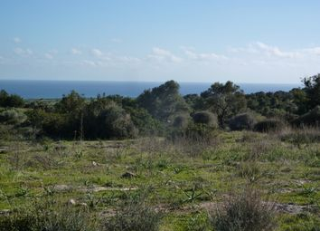 Thumbnail Land for sale in Mehmeticik, Cyprus