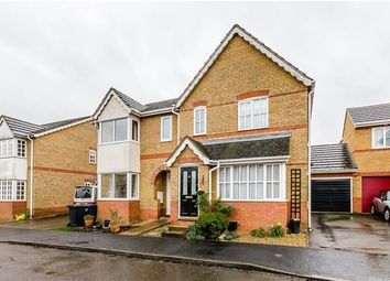 Thumbnail 3 bed semi-detached house for sale in Orton Drive, Witchford, Ely