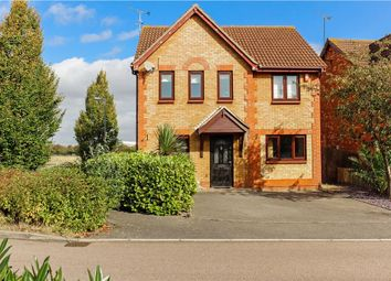 Thumbnail 4 bed detached house for sale in Farne Drive, Wickford