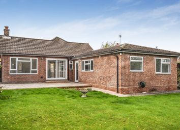 Thumbnail 3 bed bungalow to rent in Gilbert Way, Berkhamsted