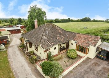 Thumbnail 4 bed detached bungalow for sale in Ashton, Wedmore